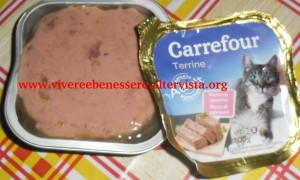 terrine carrefour adult